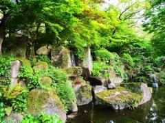 岐阜公園の自然