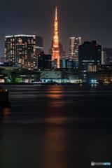 お台場から見た東京タワー
