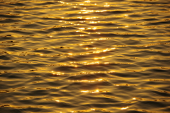 大濠公園の夕陽