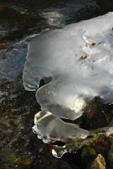 あえて真夏に 氷の造形②