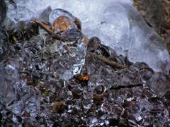 涼感をどうぞ 岩に張り付く氷塊