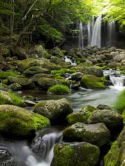 緑に包まれた滝