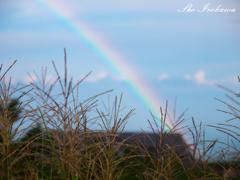 虹と秋の訪れ