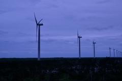 風力発電の並ぶ風景