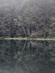 霧の湖畔 2