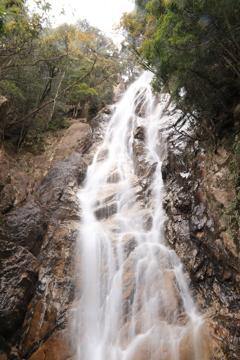 楊枝の滝(雄滝)1