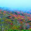 色づく秋~那須岳/姥ケ平