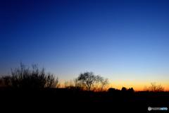 近所の夕景①