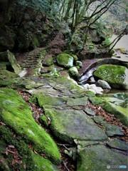 渓谷の小径