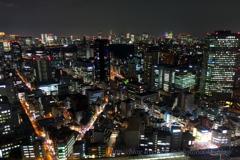 「東京タワーが」・・・見えますか?