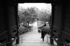 護国寺不老門にて