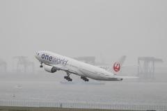Haneda Airport  JA771J