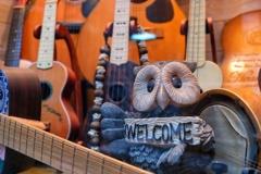 ギター屋さんへようこそ