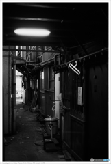 北九州市小倉 黄金市場 Nikon_FE_Kodak_400TX__40