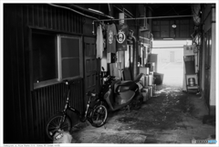福岡市東区馬出 Nikon_FE_Kodak_400TX__16