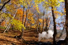 炭焼き小屋の煙と紅葉