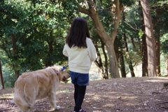 木陰をお散歩