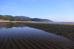 海岸散歩〜♪♪