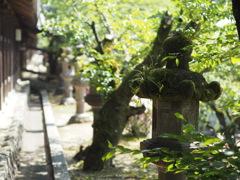 吉備津神社 1