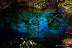 青い♡/神の子池