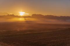 部屋の窓からの朝霧