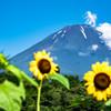 初夏の富士