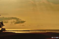 砂丘に別れを告げて