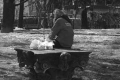 公園のベンチは