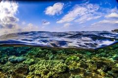 沖縄 瀬底島の半水面の写真