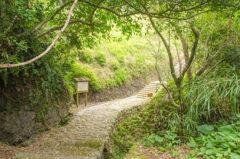沖縄 恩納村の裏スポット