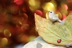 小物 小鳥