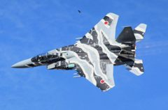 F15DJ Aggressor