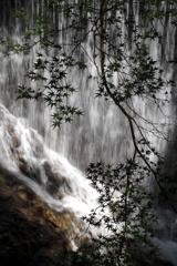 滝の音が聴こえる