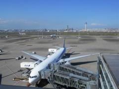 羽田国際線ターミナル(娘の絵4)