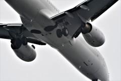JAL B737 HND RWY22