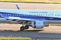 HND撮影16(ANA・A321足元)
