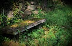 雑草生い茂る憩いのベンチ