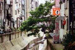渋谷川稲荷橋3-1