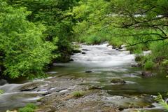 十和田の川