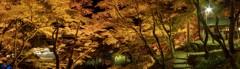 香嵐渓の秋色絵巻
