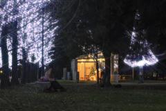 学びの森イルミネーション3