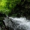 夏の夢想滝
