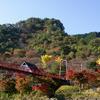 あゆのつり橋と紅葉の矢祭山
