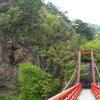あゆのつり橋と岩つつじ