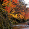 奥久慈渓谷、高地原の紅葉