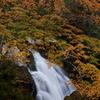 紅葉に包まれる下滝