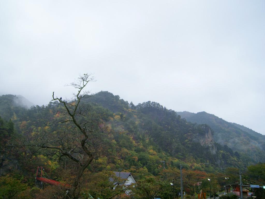 雨にぬれる秋のあゆのつり橋〜乙女ヶ越