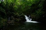 大風川渓谷の小滝
