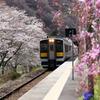 桜の矢祭山駅に入って来る水郡線