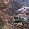 桜の矢祭山駅と水郡線